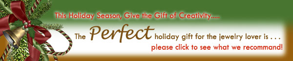 Gift Certificate for Your Holiday gift giving